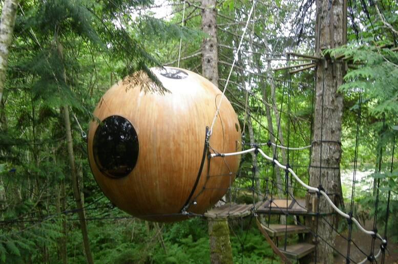 Un soggiorno a tutto tondo sugli alberi della foresta pluviale ...